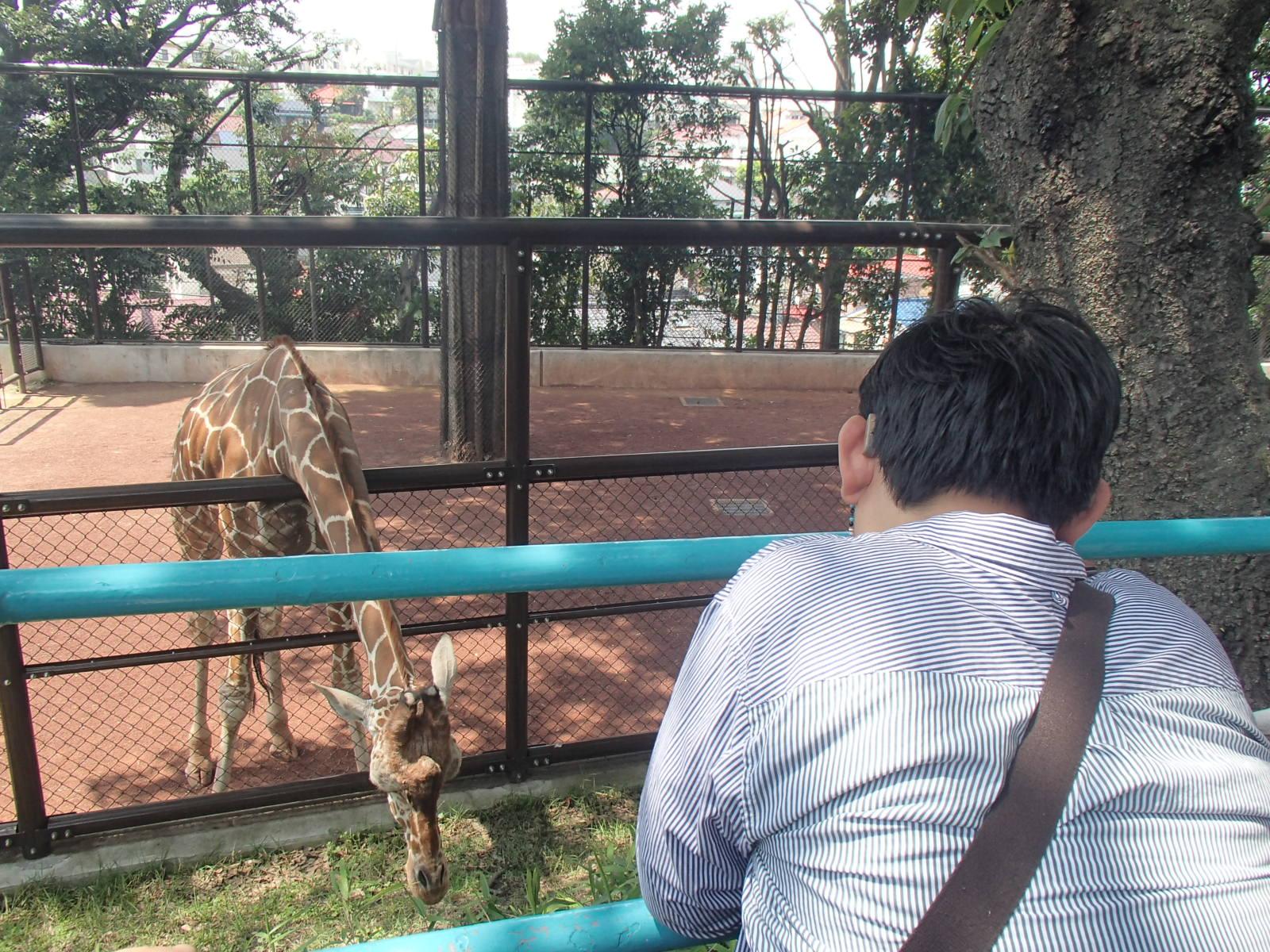 0524野毛山動物園 048.JPG